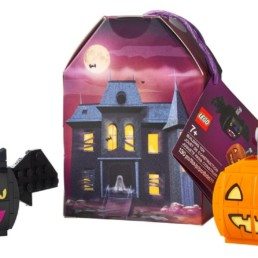 LEGO 854049 Pumpkin & Bat Duo