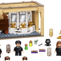 LEGO Harry Potter 76386 Hogwarts Polyjuice Potion Mistake