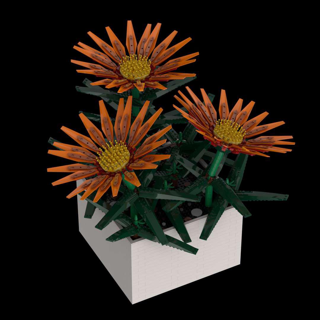 Gazania Flower Pot Florien MOC