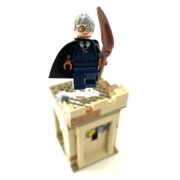 LEGO Harry Potter 76395 First Flying Lesson